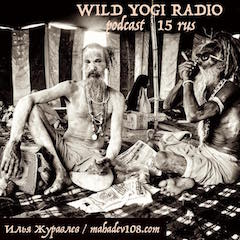 podcast 15 rus240