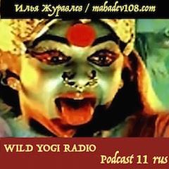 podcast11rus240