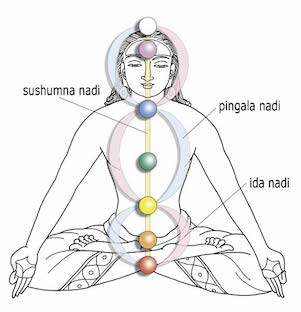 chakras-and-the-nadis312
